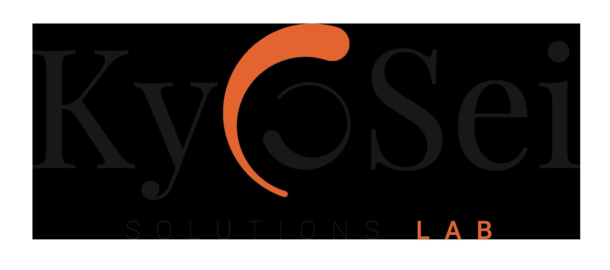 KyoSei Leadership